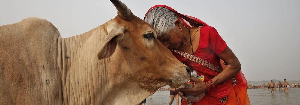India food facism